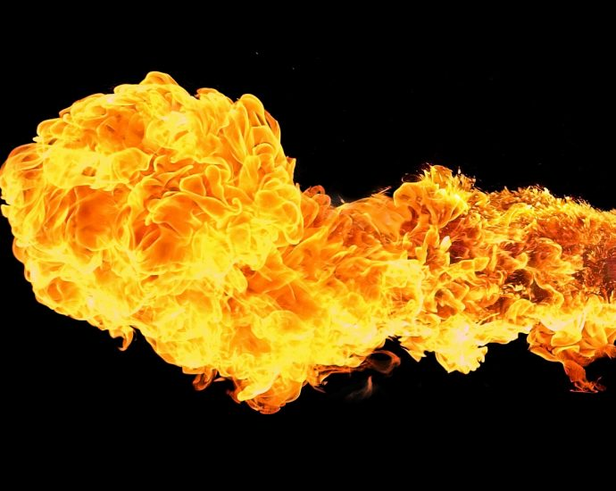 Flame_of_fire - Luc Viatour - The_Armenite