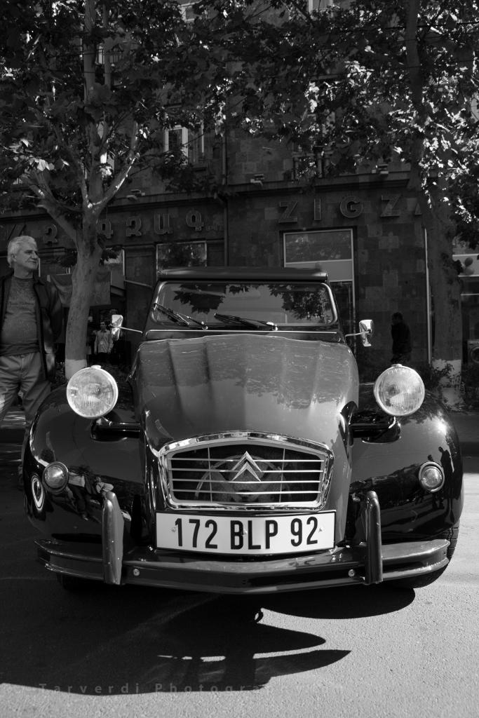 Alex Tarverdi-Classic Cars-Tarverdi_Photography-The_Armenite (5) (683x1024)