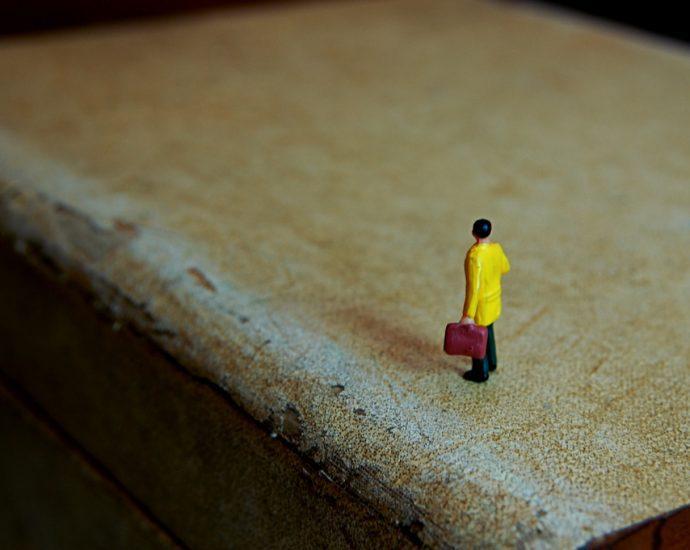 Lonely Traveler The Armenite
