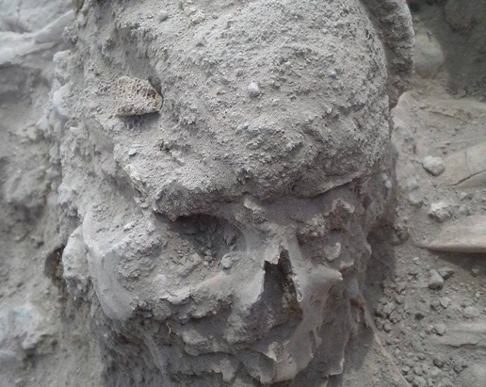 Teishebaini Urartu skull - Armen Martirosian - The Armenite